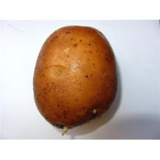 Картофель посадочный среднеспелый сорт Рая в сетке 3 кг